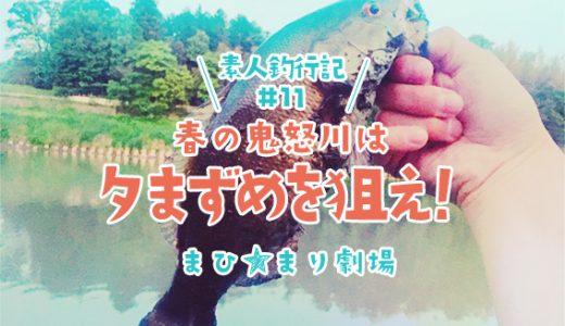 【バス釣り】素人釣行記#11 春の鬼怒川は夕まずめが狙い目!スモール大爆釣!