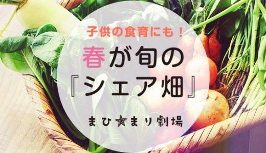 【こどもの食育】これからが旬!「シェア畑」を始めるなら春がおすすめ