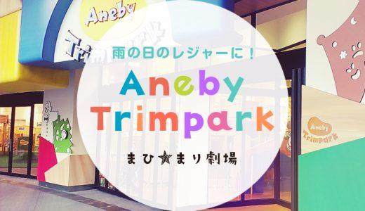子どもとお台場で遊ぶなら『アネビートリムパーク』がおすすめ!体験レポート・口コミ