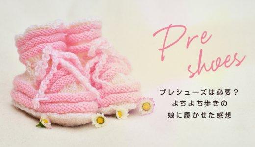 【赤ちゃんの靴】プレシューズって必要?よちよち歩きの娘に履かせた感想・レビュー
